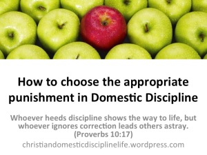 choose-appropriate-punishment-domestic-discipline