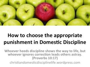 choose-appropriate-punishment-domestic-discipline