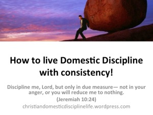 live-domestic-discipline-consistency